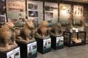 Montecreto (Mo): Museo la casa dei Leoni di pietra
