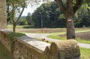 Cammini dell'Emilia-Romagna Via Matildica