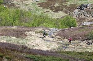 Sport trekking