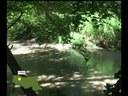 Passeggiando per i parchi (1 parte)
